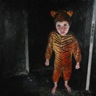 Tigerboy