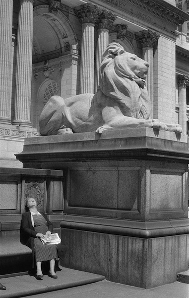 Lady and the Lion- NYPL- Fifth Avenue  Frank Oscar Larson.ss_full
