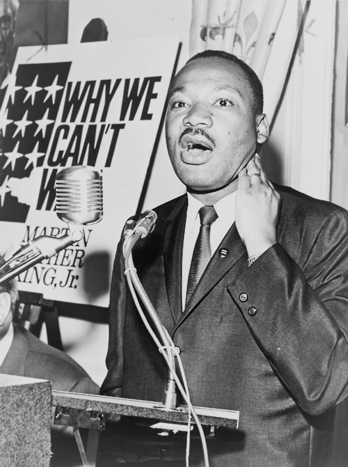 Dr. Martin Luther King Jr. - why we can't wait
