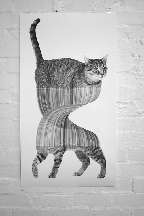 Jonathan Zawada-Schrodinger's Cat-My piece for the Goodbye Yellow Brick Road show at The Commission Gallery in Melbourne