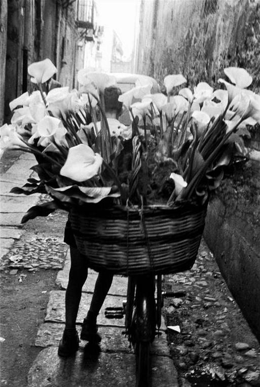 Bruce Davidson - delivery man with arums on a bike, Sicily, 1961 - tumblr_m7futcRufX1qakafjo1_r2_1280