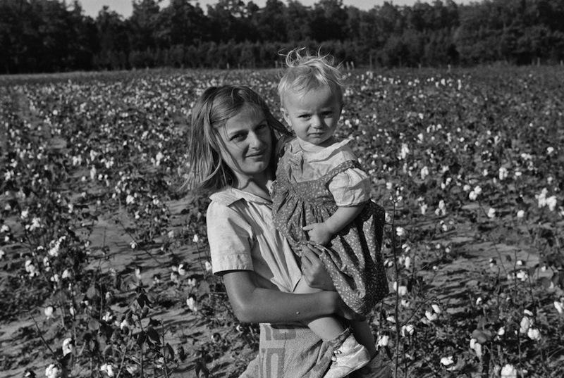 Marion Post Wolcott 08-Children in a cotton field, Statesville, North Carolina, 1939