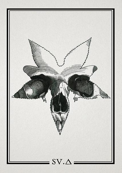 SV-A Tattoo - Master & Tattoo Studio-09