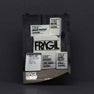 Plasticbionic - FragilFlyer-2