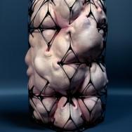 Jason Hopkins - Biostructure III, 2011
