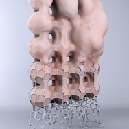 Jason Hopkins - Biostructure IV, 2011