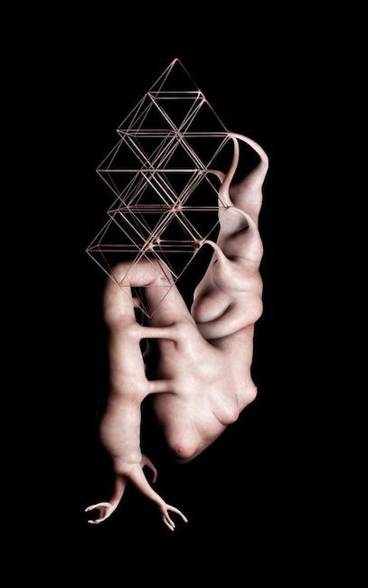 Jason Hopkins - Human Reconfiguration X, 2009