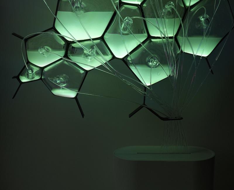 Philips Design Concept - Bio-light
