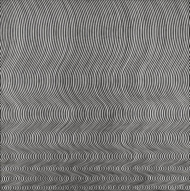 Bridget Riley - Fall, 1963