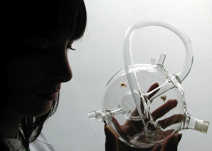 Susana Soares - Bees project, 2007-2009