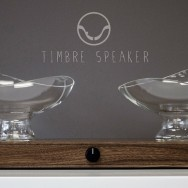 Casey Lin - Timbre Speaker, 2013