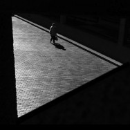 Rupert Vandervell - Man on Earth serie - fragile