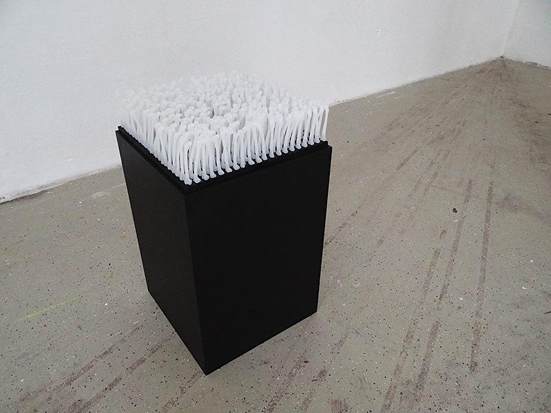 Monika Horcicova - Memento Vivere I (diploma thesis), Lukopren, 2014