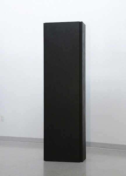 Penn Young - A Congenial Awareness 12 (Acrylic on muslin over hollow core doors - 2013)