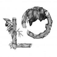 Violaine et Jérémy - Illustrations