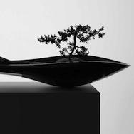 Adrian Magu - Kasokudo bonsai planter
