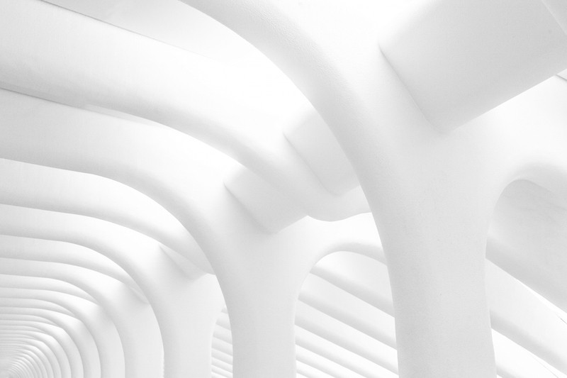 Tamara Weber - first portion of WTC Transportation Hub West Hall (by Santiago Calatrava Valls), NYC